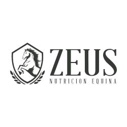 ZEUS-WEB.png